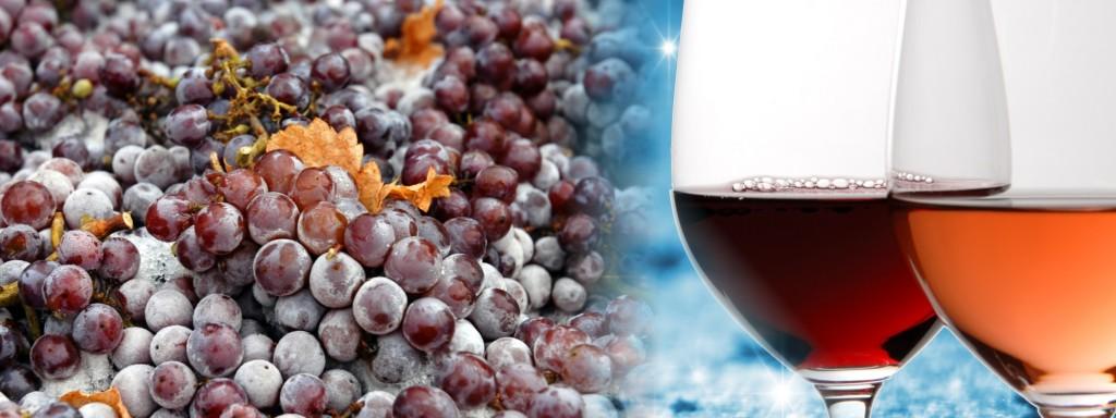 ice wine_Okanagan
